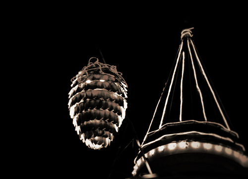 The Infamous Flagstaff Pine Cone Drop!
